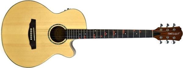 Frelight Pro Acoustic