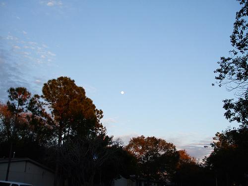 daylight-moon