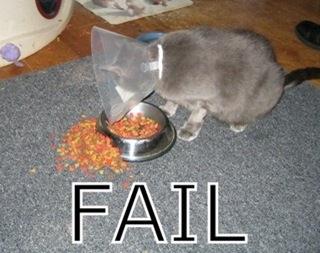 fail-1